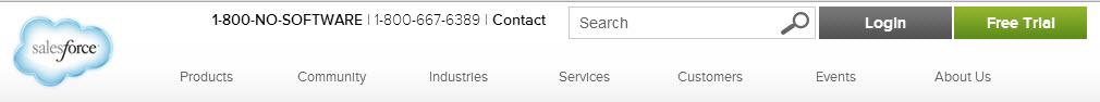 Salesforce.com header